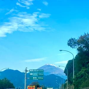 まるたん旅行 京都