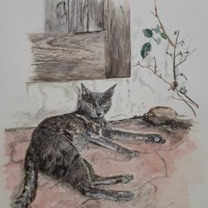 猫さんがいる風景