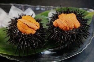 【話題】中国人もビックリ、日本人の食生活「マグロ、ウニ、タコ、生ハム…日本人はよく生で食べられるなぁ」【2chまとめ】