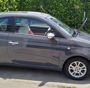 FIAT500洗車