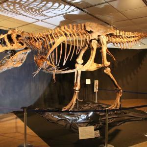 ジュラシック大恐竜展(その1)