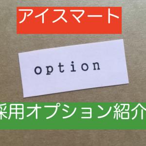 【34坪 アイスマート】我が家の採用オプション紹介!!