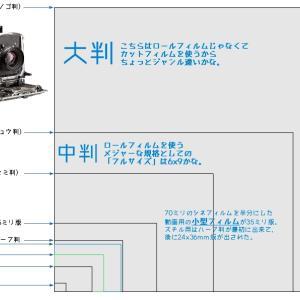 フィルムやセンサーのサイズ