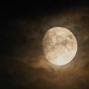 今日の月 雲の月