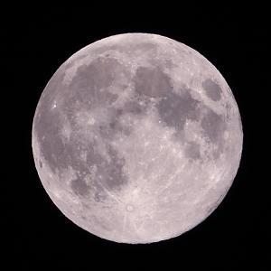 「月」の撮影 2020年5月7日(機材:コ・ボーグ36ED、スリムフラットナー1.1×DG、E-PL5、ポラリエ)
