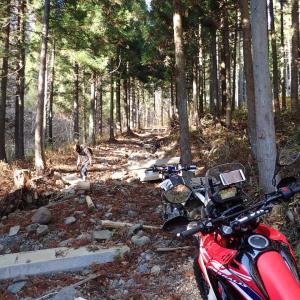 CRF250RALLYで行く、林道いろいろ@丸森町