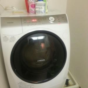 洗濯乾燥機洗浄の儀
