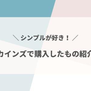 【カインズ】シンプルデザインが良い◎スキット他、購入したオススメ品を紹介!