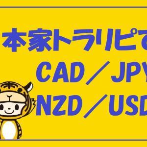 6/12週本家トラリピ【NZD/USD】12,378円累計16,912円
