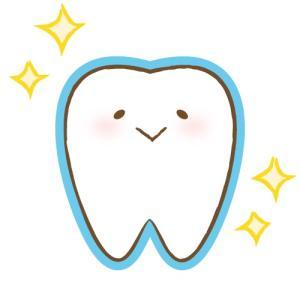 歯への意識が変わったお話。その②:歯磨きのしすぎで…!?