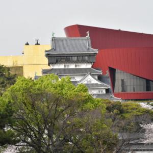 【写真】昼と夜の小倉城と桜
