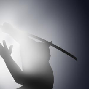 【大河ドラマ】将軍・足利義輝が襲撃された永禄の変とは?麒麟がくる24話