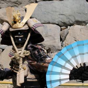 【大河ドラマ】将軍・足利義昭三好軍に本国(圀)寺にて襲撃される、麒麟がくる28話
