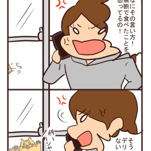 【猫漫画】猫はかすがい