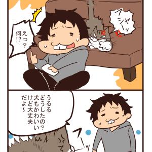 【猫漫画】そういうことじゃない。