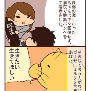 【猫漫画】リンちゃん③