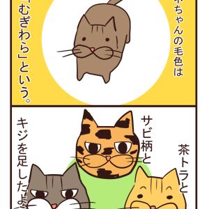【猫漫画】麦わら柄