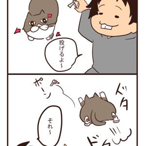 【猫漫画】とってこい