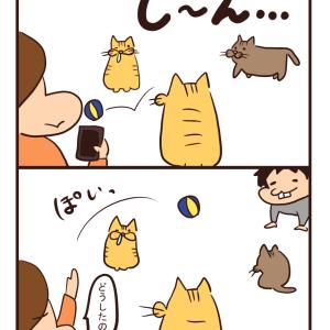 【猫漫画】なぜやめる