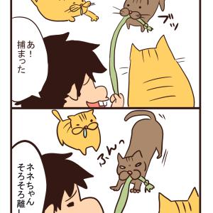【猫漫画】ひもで遊ぼう