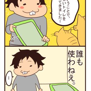 【猫漫画】トイレ事情