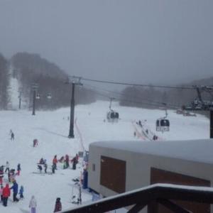 グランデコでスキー!