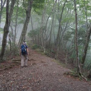 リハビリゆる登山inパノラマ台(山梨県精進湖)