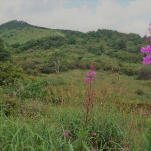 後編:湿原の草原トレイル霧ヶ峰