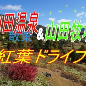 GoToで長野旅④紅葉の山田温泉散策