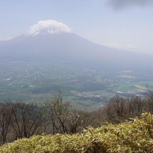 ツツジと雨ヶ岳の急登と富士山