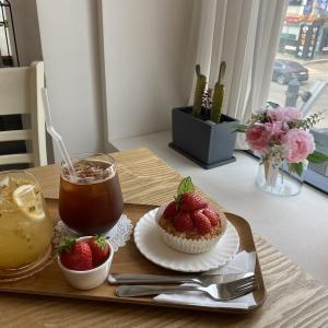 【京義・素砂】タルトが有名なまったりカフェ