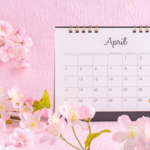 【韓国生活費】在韓日本人の1カ月の生活費<4月編>