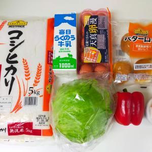 食材買い出し/白くまデザート/麻婆豆腐丼/楽天ポイント