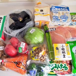 食材買い出し/鶏むね肉のアスパラ巻き/処分したもの