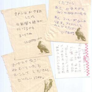 嫁の置き手紙、ひどいことをした