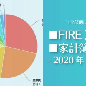 【痛い出費が…】ひこすけのFIRE達成度・家計簿をブログ公開【2020年01月】