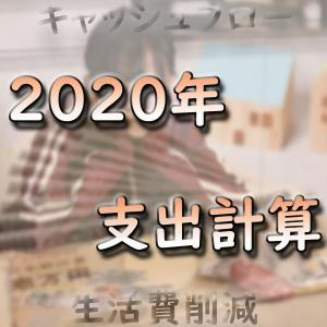 【目標は月5万】2020年1年間の支出(生活費)を計算してみた