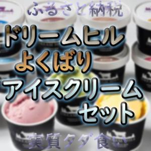 【ふるさと納税】ドリームヒルよくばりアイスクリームセットがおすすめ!!