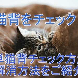 猫背をチェック!簡単猫背チェック方法と解消方法をご紹介!<br />