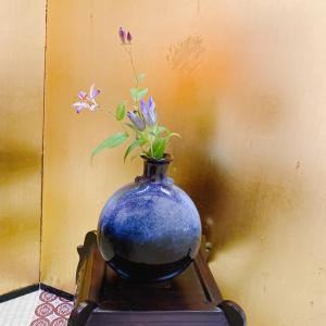 【Goto旅@高野山】9.宿坊で精進ディナー
