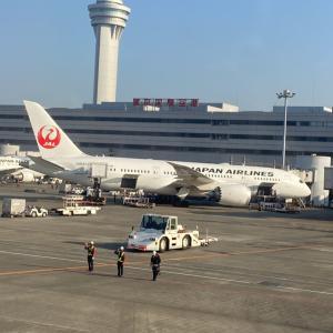 【JGCへの道】2.今飛行機乗るなら普通席が正解だった件