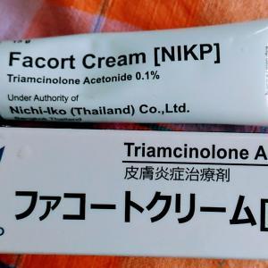 日医工業務停止命令か!?でもタイで買った日医工の薬が赤ニキビに効果発揮中。