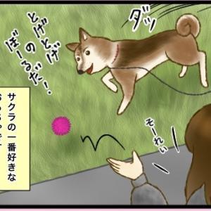 SAKURA ~第5話~