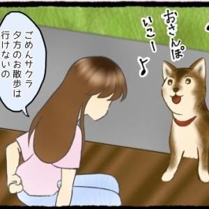 <第13話> 意外な救世主