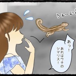 <第14話> 脱走シマリス