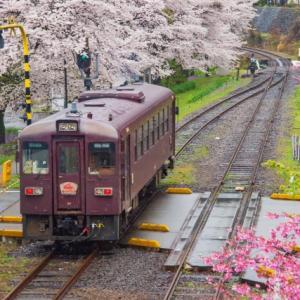 映画「君に届け」の舞台は群馬県と栃木県。春馬くんは永遠だよ