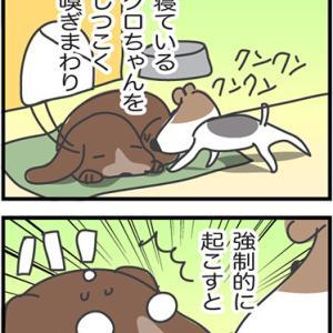 ★4コマ漫画「迷惑」