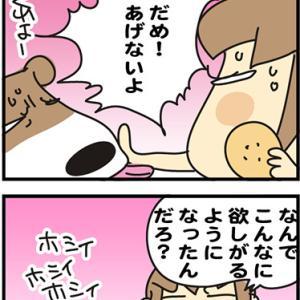 ★4コマ漫画「そんな年頃」