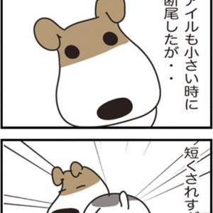 ★4コマ漫画「断尾」