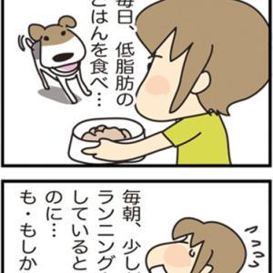 ★4コマ漫画「狂犬病予防接種」